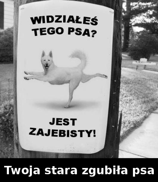 twoja-stara-0000187407