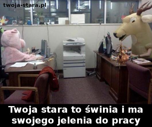 twoja-stara-0000187627