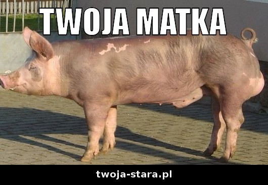 twoja-stara-0000188220