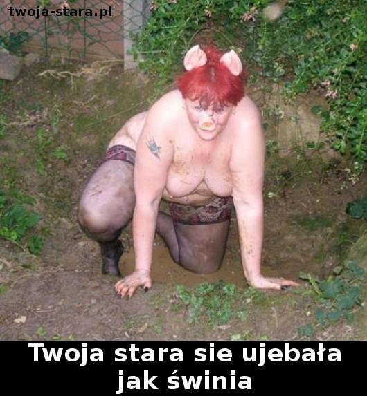 twoja-stara-0000188990