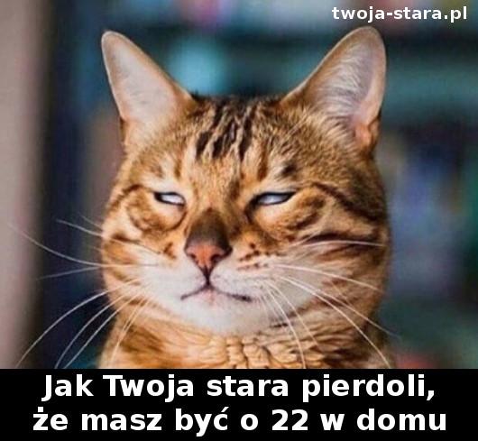 twoja-stara-00001890033