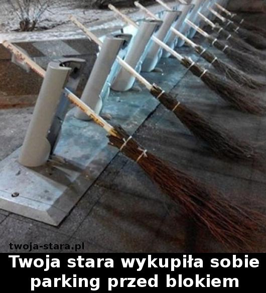 twoja-stara-00001890044