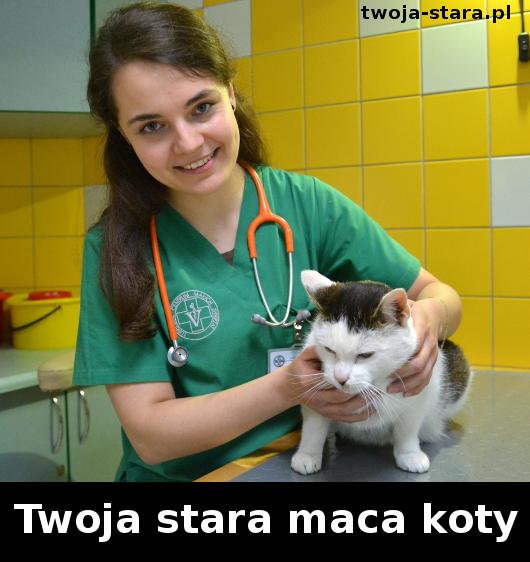 twoja-stara-00001890055